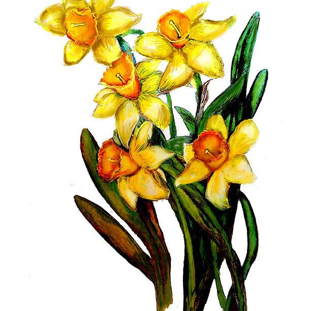 1-Daffodils
